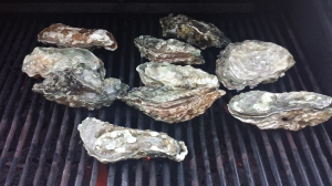 Grilled Oysters whole