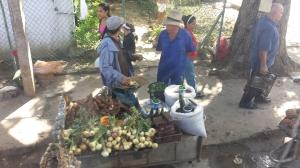 Cuba farmstand 2