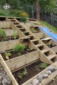 Garden Ideas10