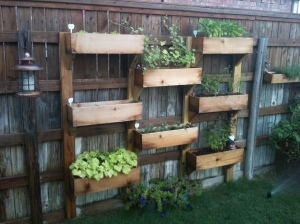 Garden Ideas13