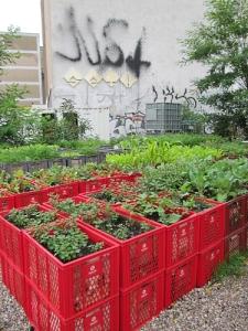 Garden Ideas14