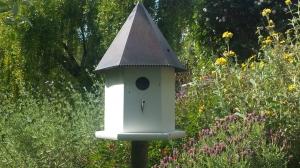 Garden Ideas17