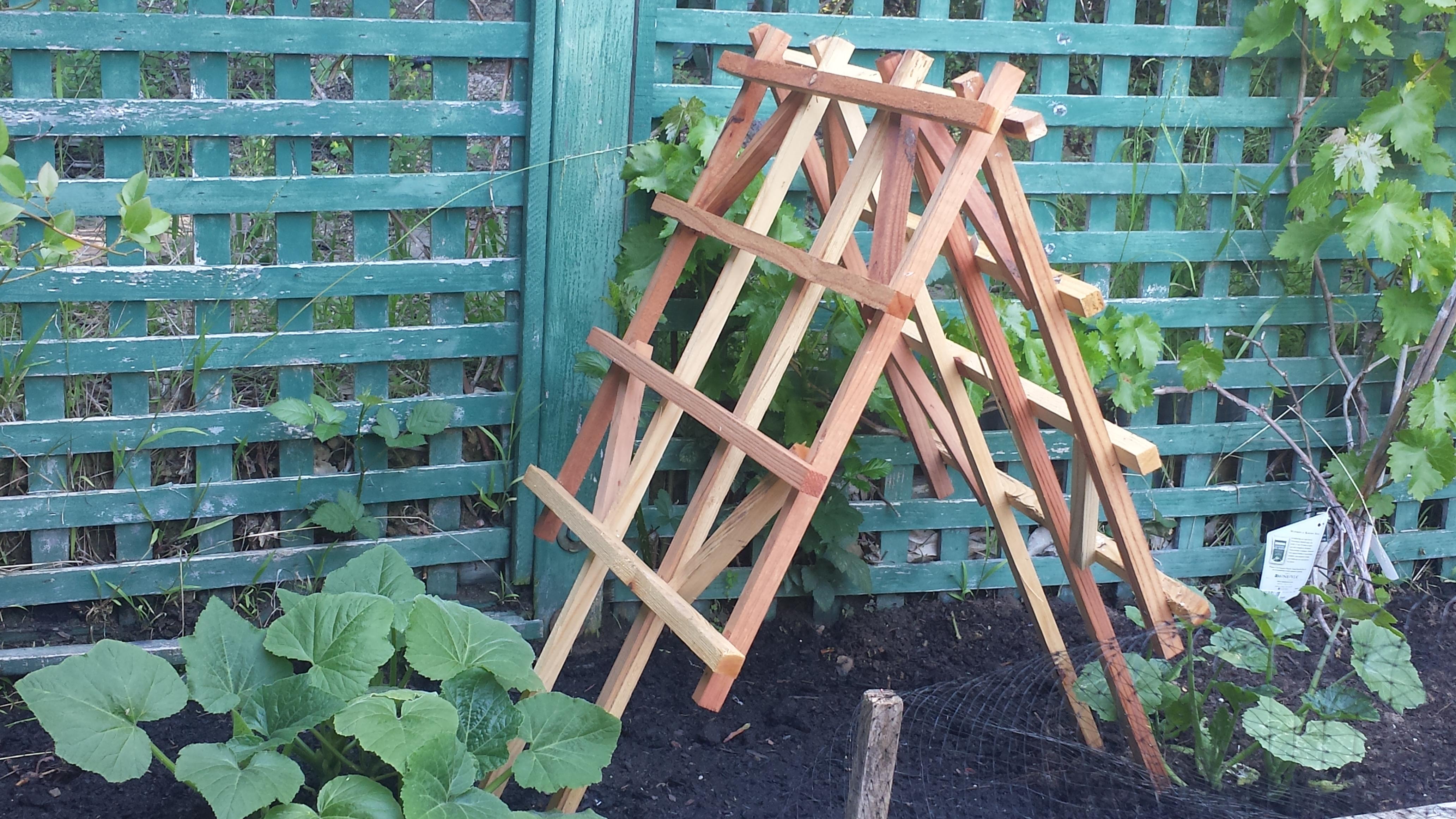 Creative Vegetable Garden Ideas