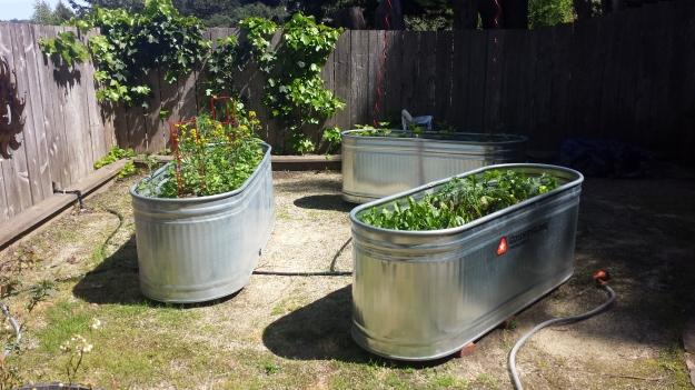 Garden Ideas4