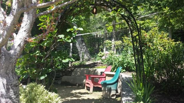 Garden Ideas7