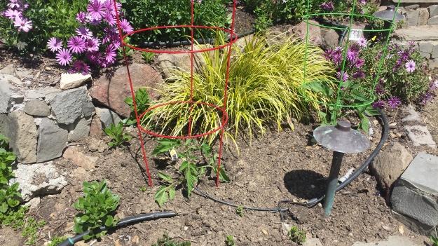 Garden Ideas8