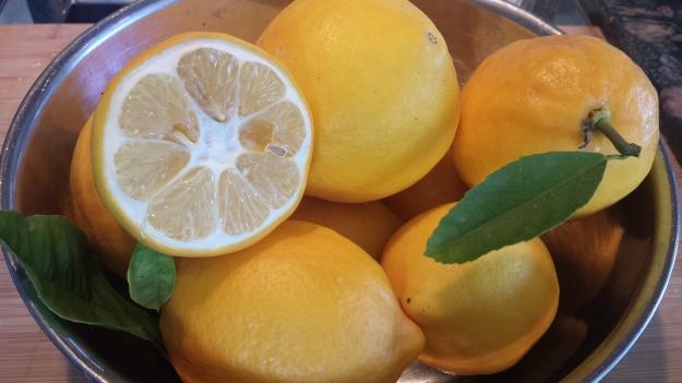 Preserved Lemons2