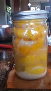 Preserved Lemons9