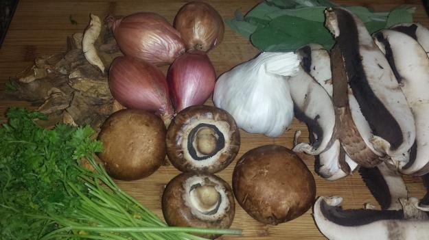 Mushroom Pappardelle1