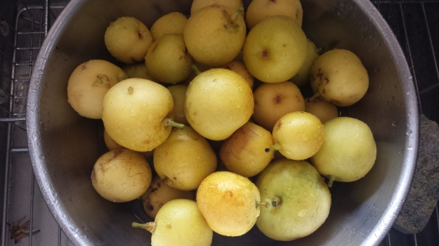Pear Galette2