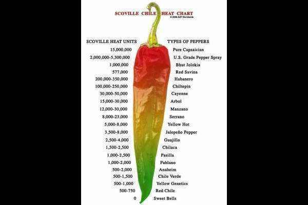 scoville-scale-chili-jump