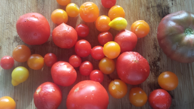 Roasted Vegetables4
