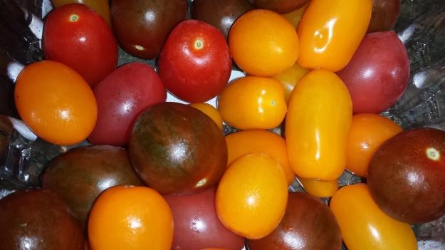 Linguine Eggplant Caper2