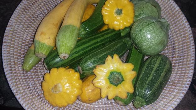 Grilled Vegetables8